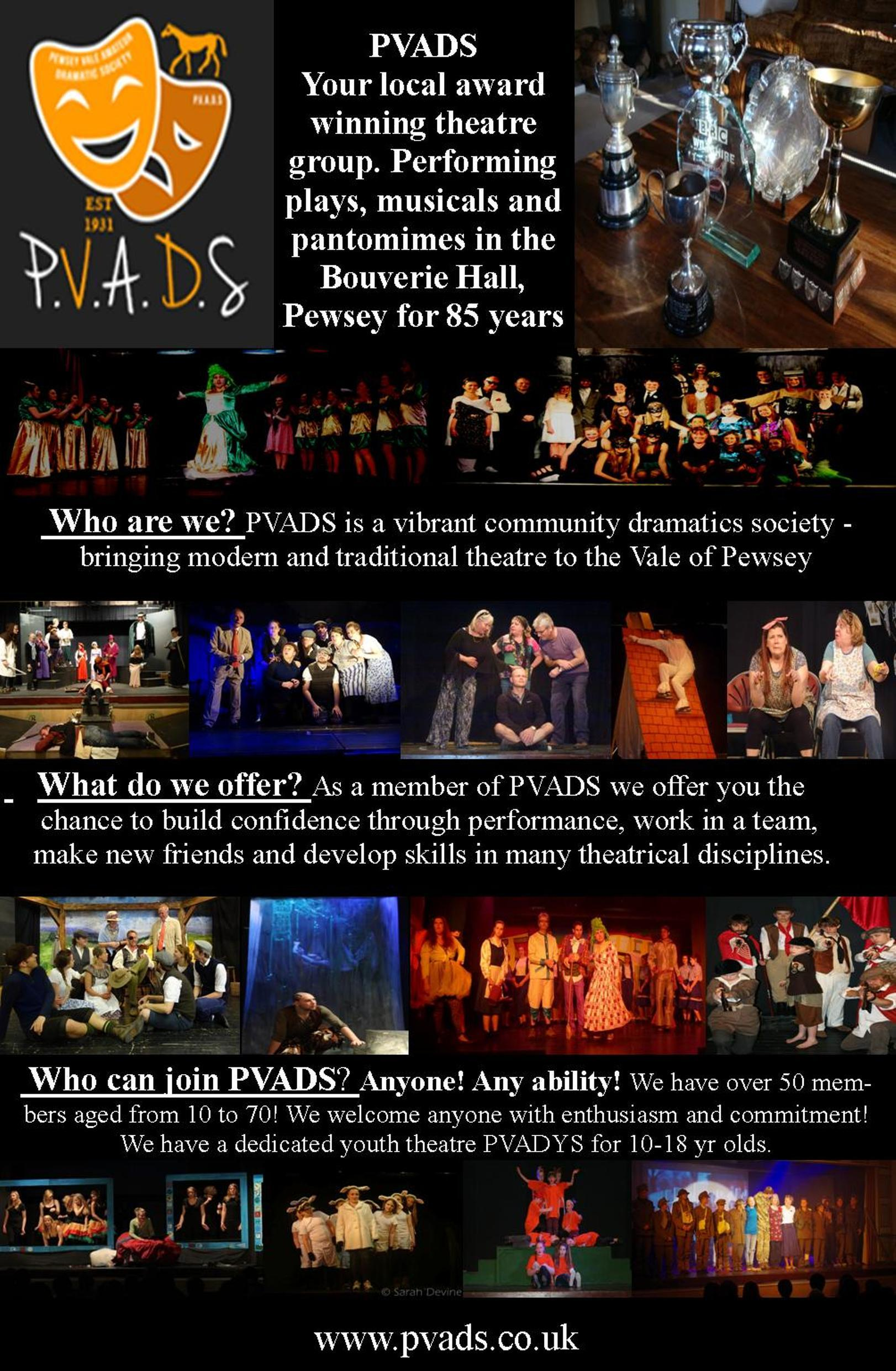 PVADS join us flyer